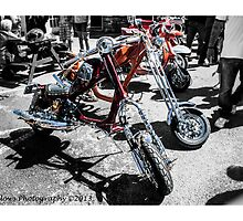 Custom Choppers by Trevor Fellows