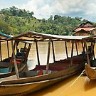 River Boats by Werner Padarin