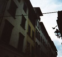 Fly Florence Fly by Yao Liang Chua