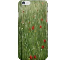 Seed Head With A Beautiful Blur of Poppies Background  iPhone Case/Skin