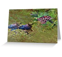 Butterfly guru Greeting Card