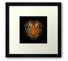 The tiger head in the dark. Framed Print