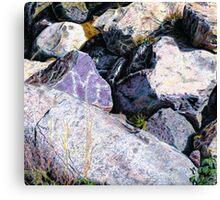 Shield Stone Canvas Print
