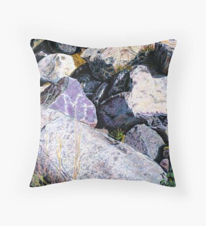 Shield Stone Throw Pillow