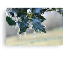 Holly Leaf in Ice Canvas Print