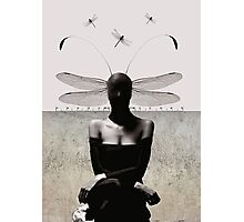 Transmogrify/damsel with no distress Photographic Print