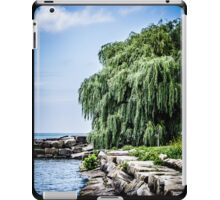 Shining Willow iPad Case/Skin