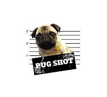 Pug Shot Photographic Print