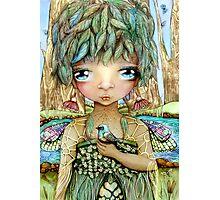 Eucalypt Princess Photographic Print