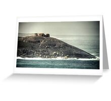 Remarkable Rocks Greeting Card