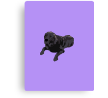 Purple Chocolate Lab Canvas Print