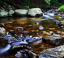 A Trouting Brook by Nazareth