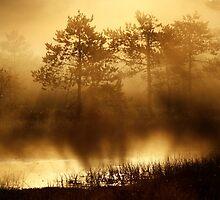 6.8.2013: By Waterside by Petri Volanen