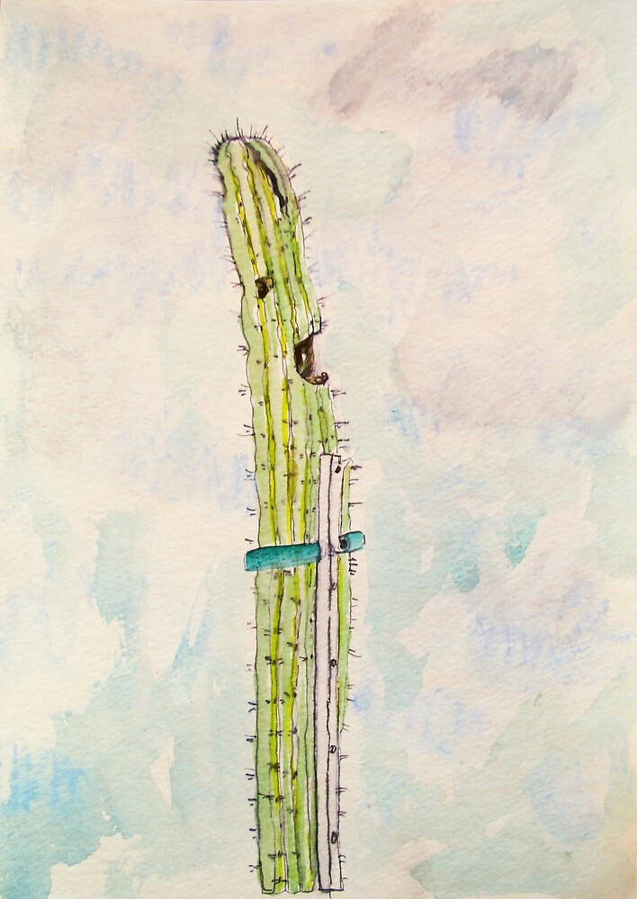 singing cactus by donna malone