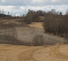 Spring time landscape. Stubble. Ås, Norway. by UpNorthPhoto