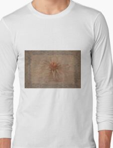 Days Later  Long Sleeve T-Shirt