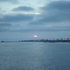 Newport Beach Sunset by Michel Baylor