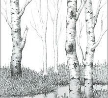 BIRCH TREE 02 by RainbowArt
