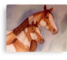 Pastel Pintos Canvas Print