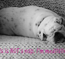 Not a Nap - I'm Meditating - Sleeping Bulldog - Black and White Dog by traciv