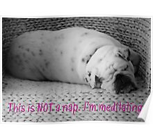 Not a Nap - I'm Meditating - Sleeping Bulldog - Black and White Dog Poster