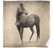 Le Cheval Poster