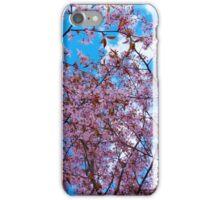 Roihuvuori iPhone Case/Skin