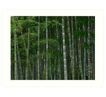 Bamboo-zled Art Print