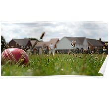 Village Cricket Poster