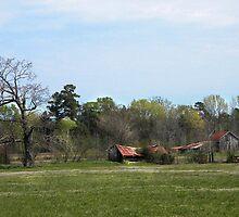 Broken Barn 2 by Patito49