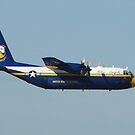 Fat Albert Airlines by Barrie Woodward