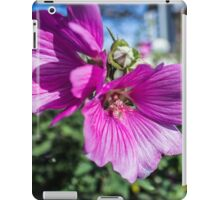 pink mallow lavatera flower iPad Case/Skin