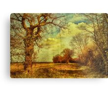 Norfolk Countryside. Metal Print