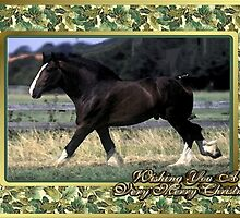 Shire Draft Horse Christmas Card by Oldetimemercan