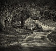 On The Road Again, BW by JulieCoe