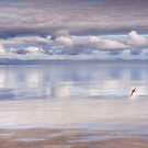 Across the Sea by Kasia-D