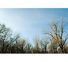 Clear Skies Photographic Print