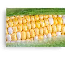 Sweet Corn on the Cob Canvas Print