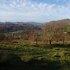 Lake District, beauty of a late afternoon autumn sun. by Grace Johnson