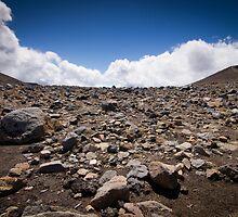 Tongariro Crossing - Rocks by Brian Lai