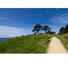 Hahei - Cathedral Cove Path Photographic Print