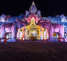 Fantasea Elephant Show by Brian Lai
