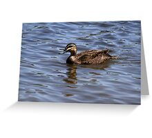 """""""Duck Blues"""" Greeting Card"""