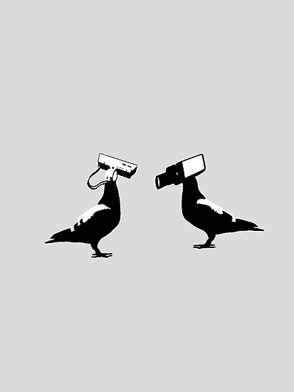 cctv doves  by derP