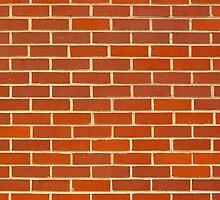 Bricks! by Keith Miller