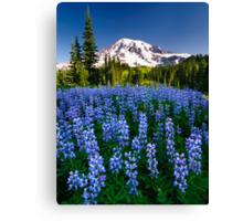 Rainier Wears Blue Canvas Print
