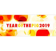 year of the pig 2019 by maydaze