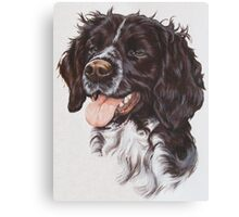 Brittany Canvas Print