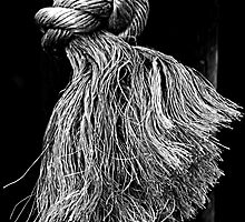 A Frayed Knot by Bob Wall