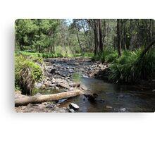 Tallebudgera Creek, Tallebudgera Valley, SE Qld., Australia Canvas Print